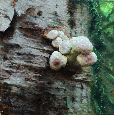 Christopher Remmers, 'Bursting the birch', 2020