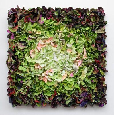 Stefan Gross, 'Lettuce', 2017
