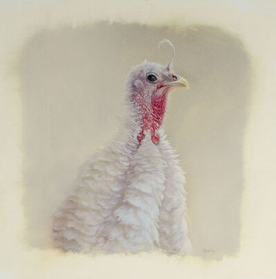 Dana Hawk, 'Ugly Turkey', 2015