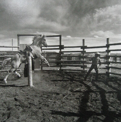 Adam Jahiel, 'Rancho Grande, Nevada', 1989