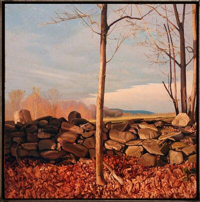 Trey Friedman, 'Trees On A Line #23', 2012