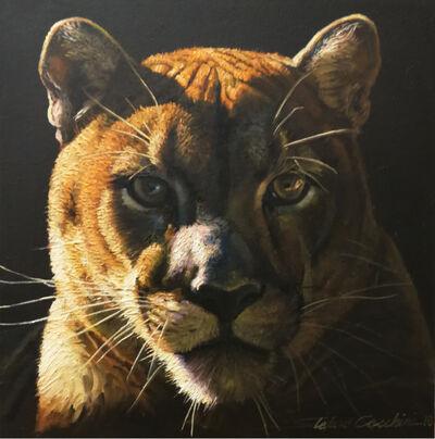 Stefano Cecchini, 'Cougar', 2017