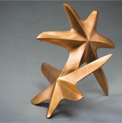 Maximilian Verhas, 'Rolling Seastar', 2010