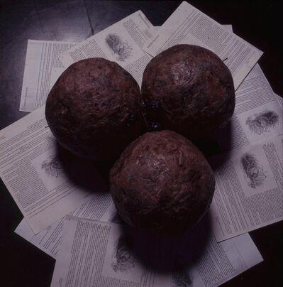 Tunga, 'Beetle Treasure', 1992