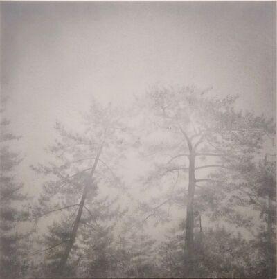 AKIRA KUGIMACHI, 'Shadow', 2018