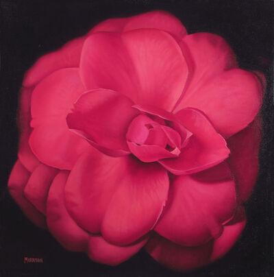 Margaret Morrison, 'Red Camellia', 2014
