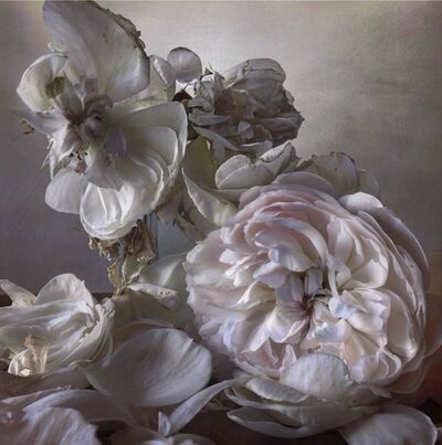 Nick Knight, 'Saturday 8th August,2015', 2015