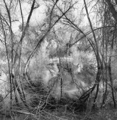 Lee Friedlander, 'Arizona', 2006 / printed 2015