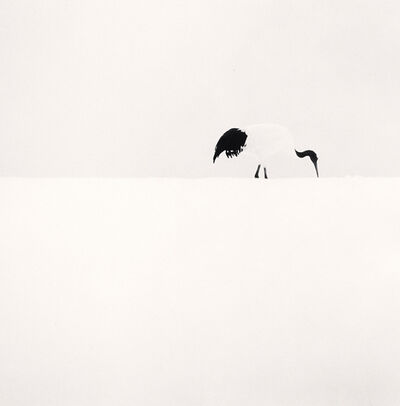 Michael Kenna, 'Red Crown Crane Feeding, Tsurui, Hokkaido, Japan', 2005