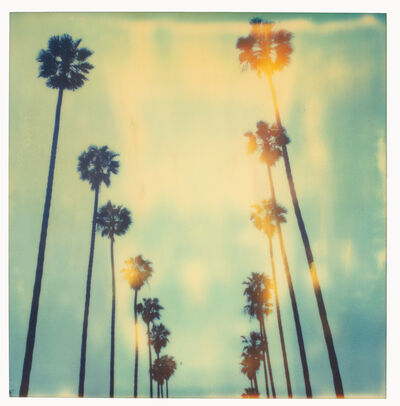 Stefanie Schneider, 'Palm Trees on Wilcox - sold out Edition of 10, Artist Proof 2/2 (last) - analog', 1999