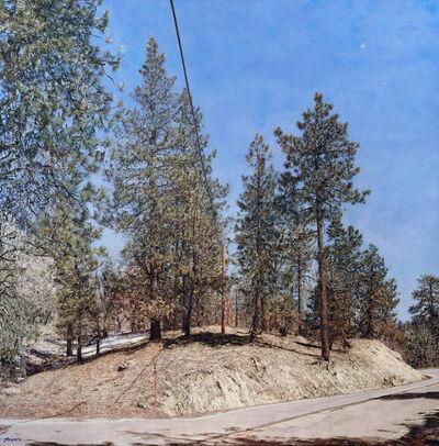 Jack Hoyer, 'Big Bear Land Slab', 2011