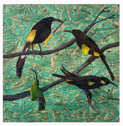 Julia Debasse, '4 Hawaiian birds', 2021