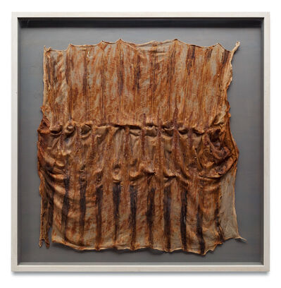 Heidi Bucher, 'Radiator', 1991
