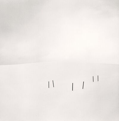 Michael Kenna, 'Asparagus Sticks, Study 3, Hokkaido, Japan. ', 2007