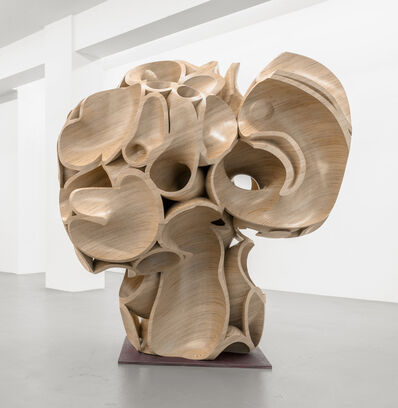 Tony Cragg, 'Multiple Skull', 2017