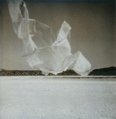 Corinne Mercadier, 'N°42, Série Une fois et pas plus', 2000-2002