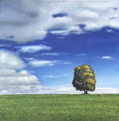 Amanda McShanage, 'Home Tree Blue Sky', 2019