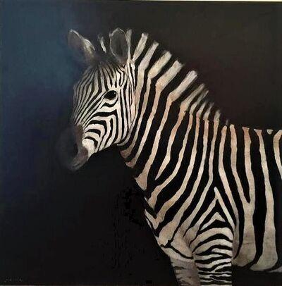 Miguel Macaya, 'Zebra', 21th Century