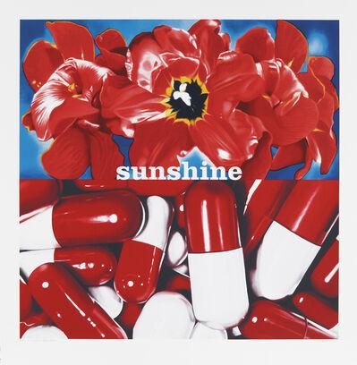 Philippe Huart, 'Sunshine Daydream ', 2007
