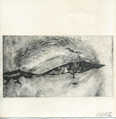 Olivia Gibb, 'Cut Eye', 2015