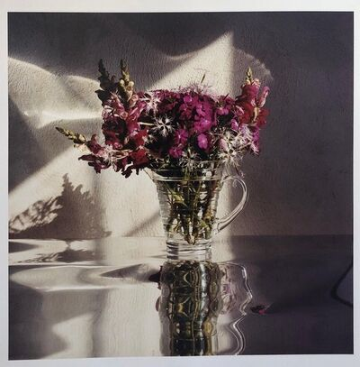 Peter C. Jones, 'Sweet Williams, Large Format Flowers Photo 24X20 Color Photograph Beach House', 2000-2009