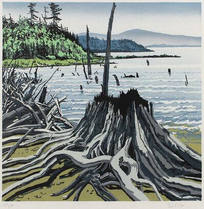 Neil G. Welliver, 'Flotsam-Allagash', 1995