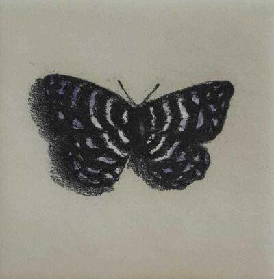 Lisa Milroy, 'Butterfly VI', 1994