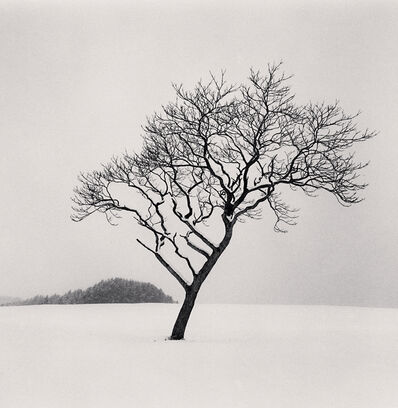 Michael Kenna, 'Blackstone Hill Tree, Hokkaido, Japan', 2020