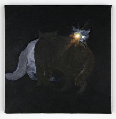 Yosuke Kobashi, 'Cat (battle)', 2013