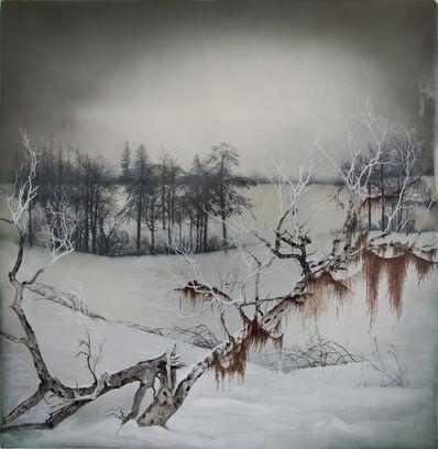 Anthony Goicolea, 'Spanish Moss', 2014