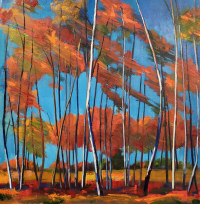 Jenn Hallgren, 'Windy Birch Patch', 2019