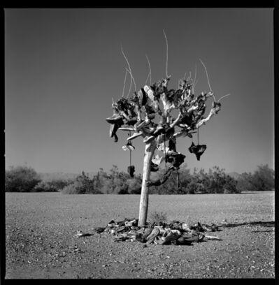 Vladimir Frumin, 'The Shoe Tree', 2018