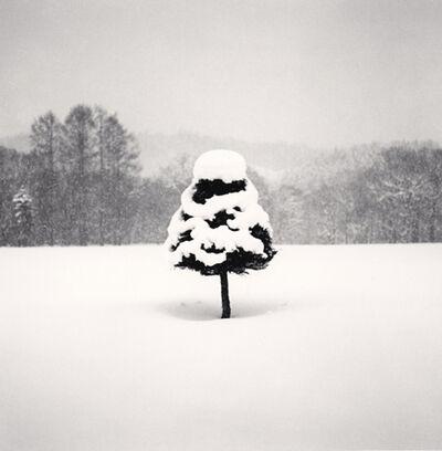 Michael Kenna, 'Snow Parfait Tree, Wakoto, Hokkaido, Japan', 2004