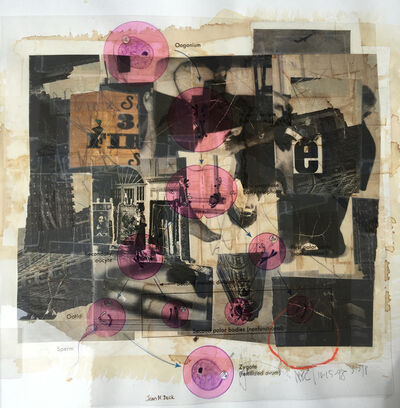 Michael Pink, 'Zygote', 1998