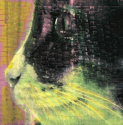 Ardan Özmenoğlu, 'I Thought I Saw A Cat', 2018