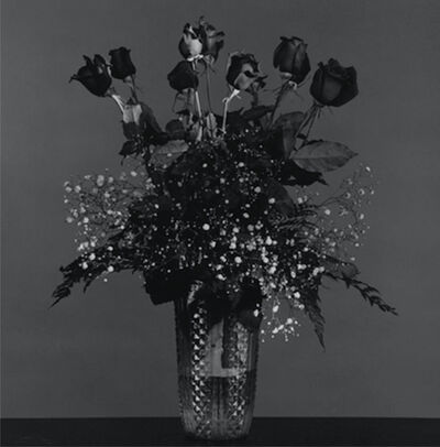 Robert Mapplethorpe, 'Rose', 1982-printed in 2012