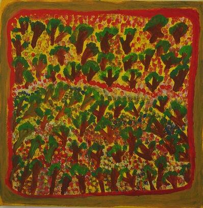 Jukuna Mona Chuguna, 'Kurrmalyi - Trees + Flowers', 2011