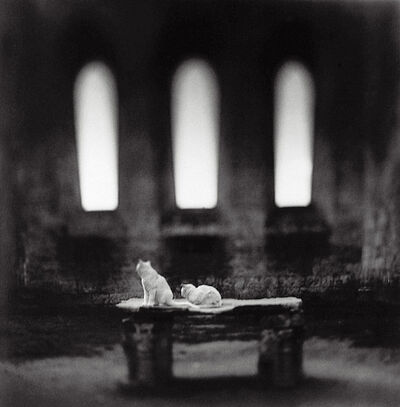 Keith Carter, 'San Galgano', 1998