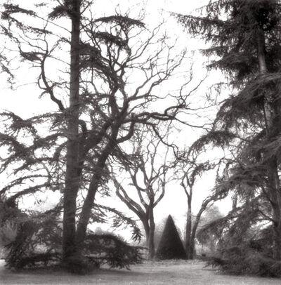 Lynn Geesaman, 'Bagatelle, Paris (6-95-78-4)', 1995