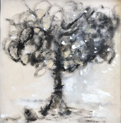 Amaya Salazar, 'Black tree', 2019