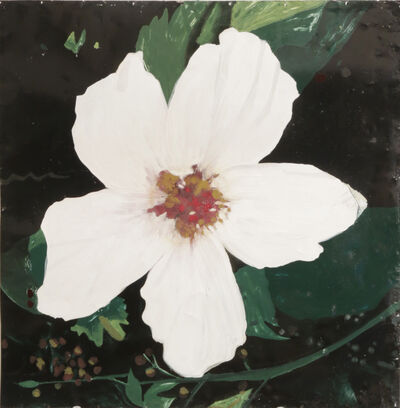 Hernan Salamanco, 'Chinese White Rose', 2016