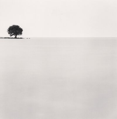 Michael Kenna, 'Biwa Lake Tree, Study 3, Omi, Honshu, Japan. ', 2003