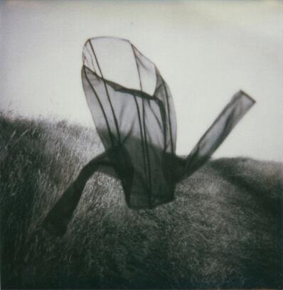 Corinne Mercadier, 'N°01, Série Une fois et pas plus', 2000-2002