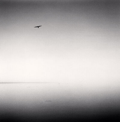 Michael Kenna, 'Morning, Main Channel, Elkhorn Slough, California, USA', 1989