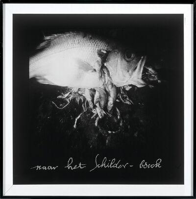 Jacky Redgate, 'Big fish eat little fish', 1984