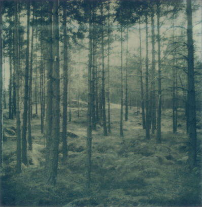 Astrid Kruse Jensen, 'Disappearing Into the Past #101', 2010-2012