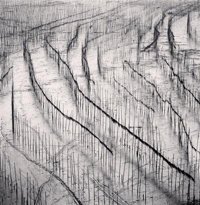 Michael Kenna, 'Seaweed Farms, Study 10, Xiapu, Fujian, China', 2010