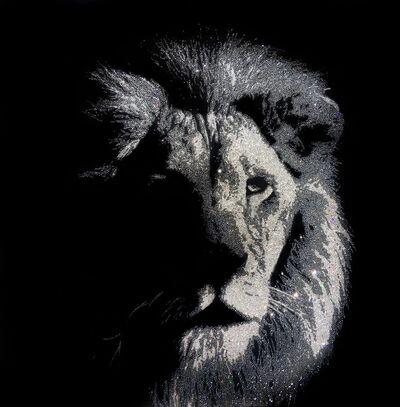 Roberta Diazzi, '(GVA) Shady Lion', 2016