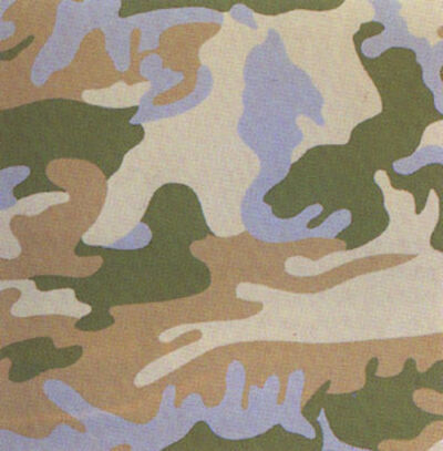 Andy Warhol, 'Camouflage FS407', 1987