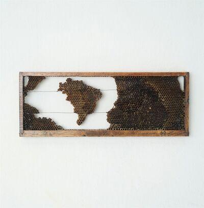 Ricardo Siri, 'Pindorama 02', 2020